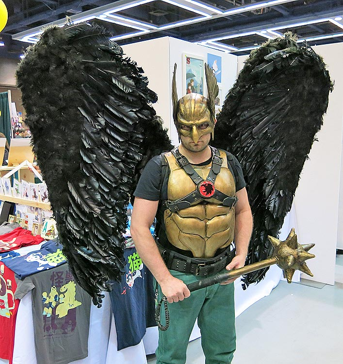 Don't mess with the Hawkman!